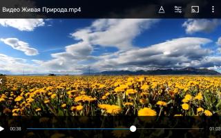 Как сделать видео на телефоне
