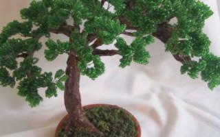 Как сделать из бисера дерево бонсай