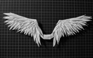Картинки петушиные крылья сделать