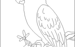Как в арткаме сделать рельеф из чертежа