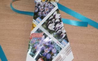 Как сделать галстук из бумаги