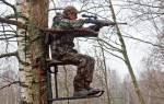 Как сделать засидку на дереве