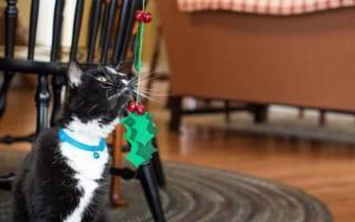 Как сделать из бумаги игрушку для кота